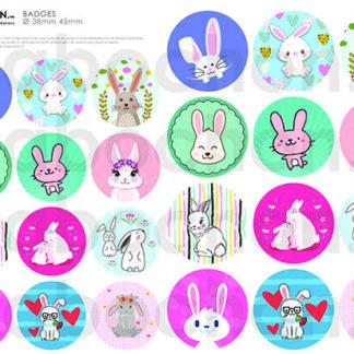 Ronds Badges / 45 - 38